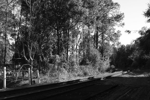 Calm Train Tracks Black Photograph by amberroyaltyboutique, $130.00