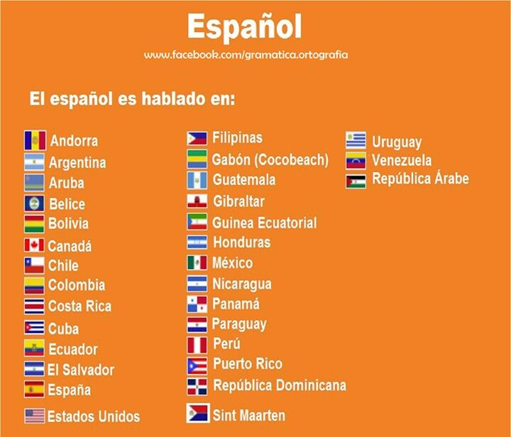 brazil essay paper 10th grade spanish