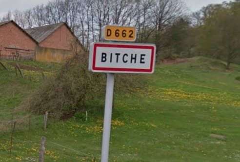 Capital of the, um, Pays de Bitche region in France.