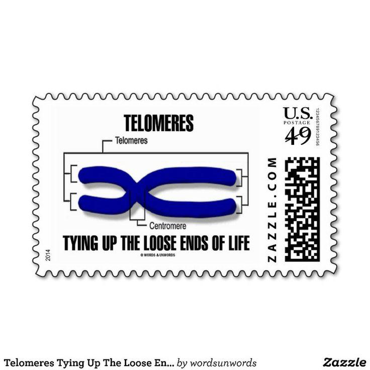 how to keep telomeres long