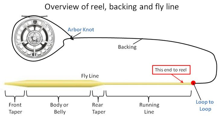 1000 images about fly fishing lines leaders and tippets for Fishing line setup