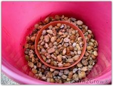 Make Self Watering Planter | Water Reservoir for Containers: Gardening