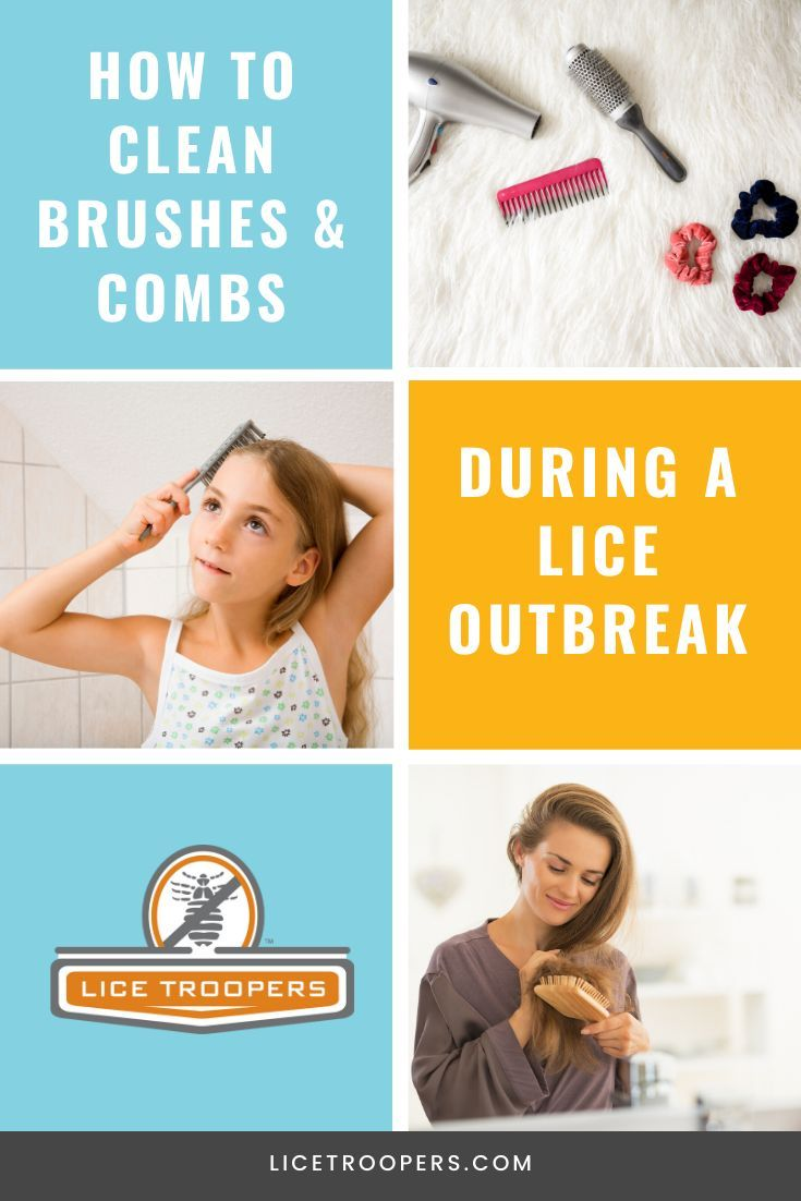 How To Clean Hair Brushes And Lice Combs During A Head Lice Outbreak In 2020 Head Louse Louse Lice Removal