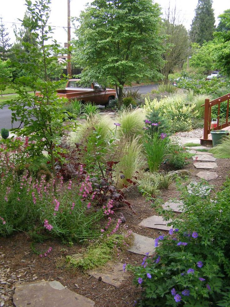 81 best Rain Gardens images on Pinterest | Gardening, Rain garden ...