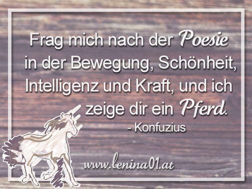 Frag mich nach der Poesie in der Bewegung, Schönheit, Intelligenz und Kraft, und ich zeige dir ein Pferd. - Konfuzius #PferdeSprüche