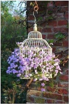 decoração gaiolas de plantas
