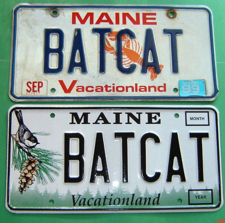 Vanity Plate Ideas For Realtors: 17 Best Images About Personalized License Plates On