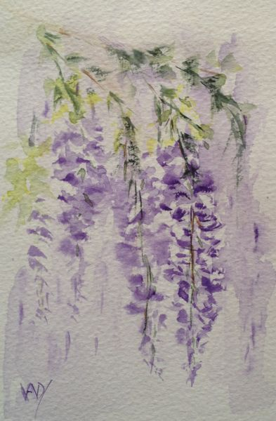 I'm so pleased I painted the scented wisteria on the back wall when I did. Two weeks later and the blossoms are almost gone but the scent still lingers.