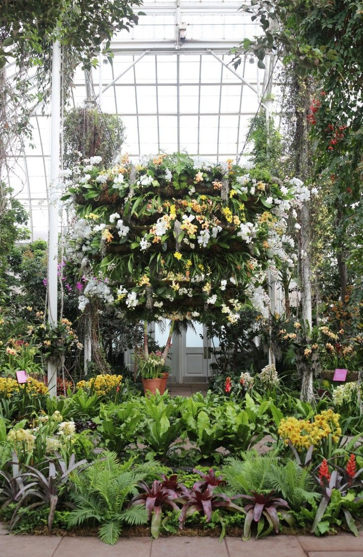 The tropical orchids cascading from the glass ceilings are members of the largest flowering family on earth, more than 30,000 species strong