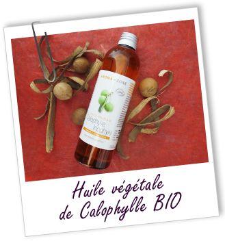 Huile végétale Calophylle inophyle BIO Aroma-Zone. actifs très puissants reconnus pour faciliter la circulation sanguine. Connue comme cicatrisant cutané et anti-infectieux, elle est appliquée sur les plaies, l'acné, l'eczéma ou le zona.