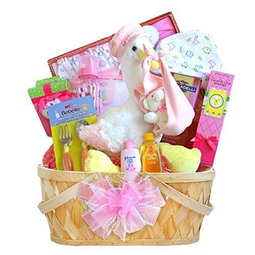 Special Delivery New Baby Girl Gift Basket