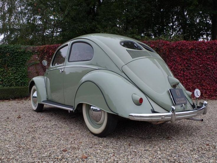 607 best split oval beetles only images on pinterest vw for 1952 split window vw bug