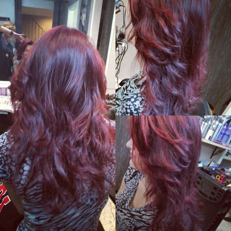 Deer rich violet blackcherry color for fall by Gail☆
