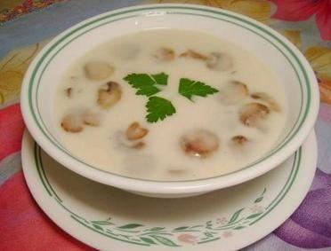 Tavuklu mantarlı çorba