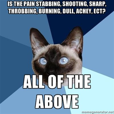 Chronic Illness Cat - Is the pain stabbing, shooting, sharp, throbbing, burning, Dull, Achey, ect? All of the above. #illness #pain