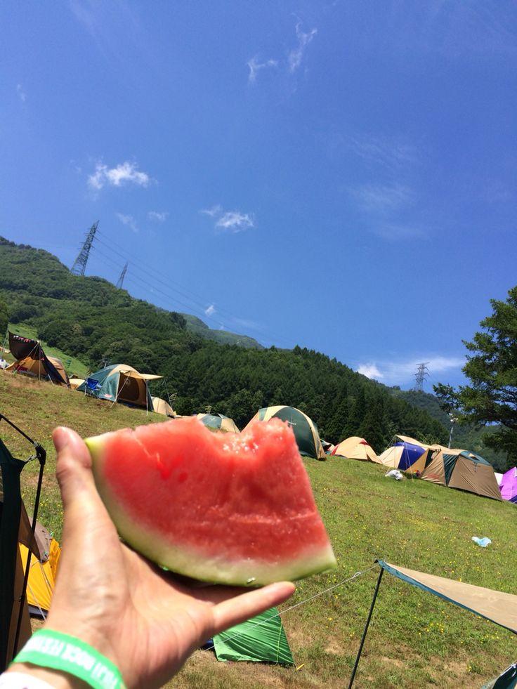 fujirock2015 晴れ!晴れ!晴れ!!