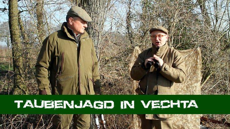Taubenjagd in Vechta - Oldenburger Jagdcenter