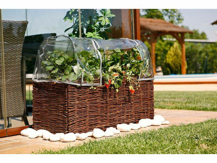 Cualquier pequeño rincón de tu #jardín o vivienda es válido si quieres montar un huerto urbano. Con nuestros Kit Planters tienes todo lo necesario. Podrás plantar flores, verduras o plantas aromáticas. #huertosurbanos #ecología