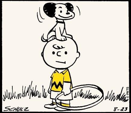 Best 25 Charlie brown cartoon ideas on Pinterest  Snoopy