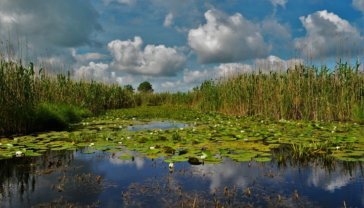 #PrivateTours in #DanubeDelta, #Romania on http://www.touringromania.com