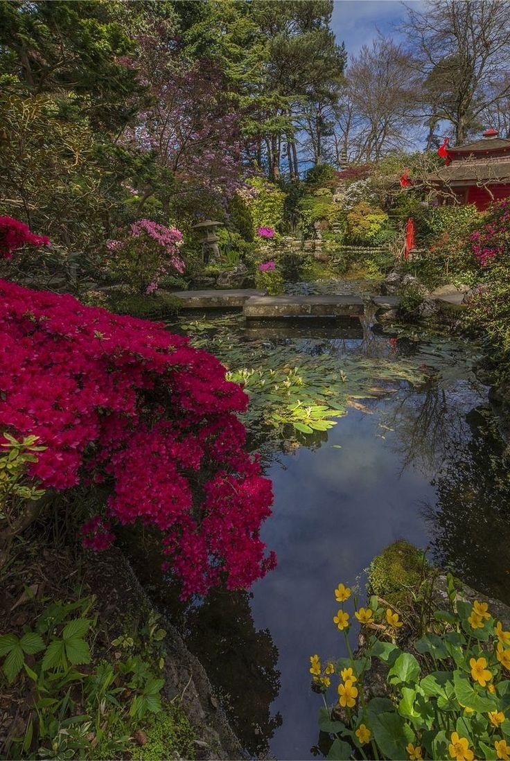 Best 25+ English Gardens Ideas On Pinterest
