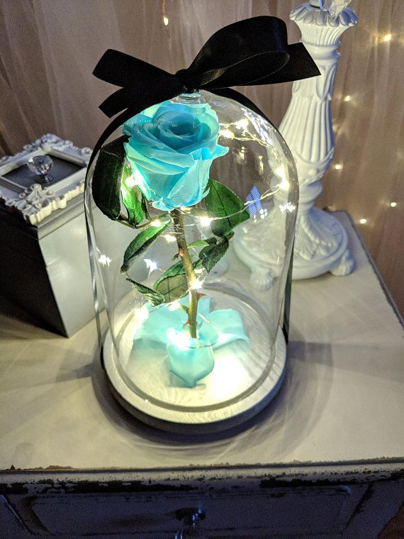 Real Tiffany Blue Preserved Rose In Glass Dome With Led Glass