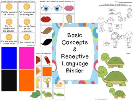 Basic concepts and receptive language activity from the blog, Speech Musings