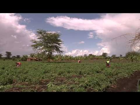 Video on the African Human Development Report 2012