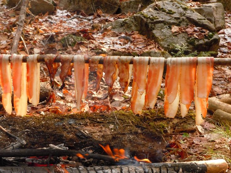Cooking bacon over a fire with a stick.