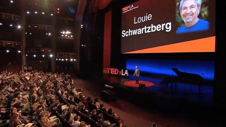 Wonder and Awe   Louie Schwartzberg   TEDxLA