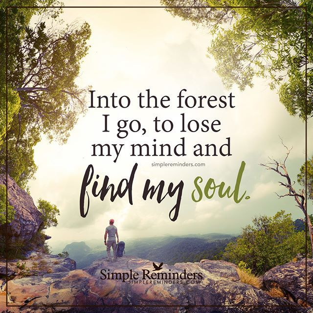 """""""Into the forest I go, to lose my mind and find my soul."""" — Unknown Author…"""