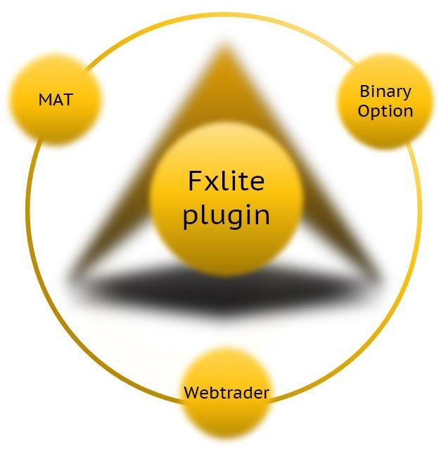 Fxlite Plugin For Metatrader 4 And Metatrader 5 A Unique