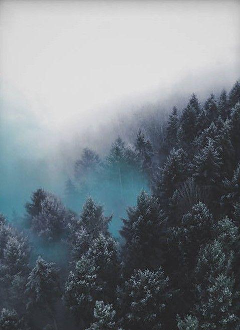 Printable Wall Art, Blue Forest Wall Art, Blue Landscape Art, Blue Nature Print, Modern Blue Printable, Forest Photograp…