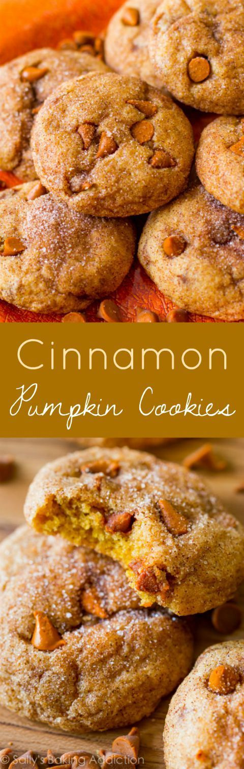 Chewy and soft pumpkin cookies do not taste cakey. Filled with cinnamon chips and rolled in cinnamon-sugar. (pumpkin desserts, recipes)