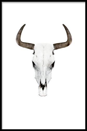 Print, poster with a horn from a buffalo. Buffalohorns posters. www.desenio.co.uk