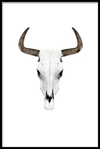 Affisch / poster med horn från buffel. Snygg tavla till vardagsrummet. Buffelhorn i grå bruna färgtoner. Desenio.se / Desenio.com