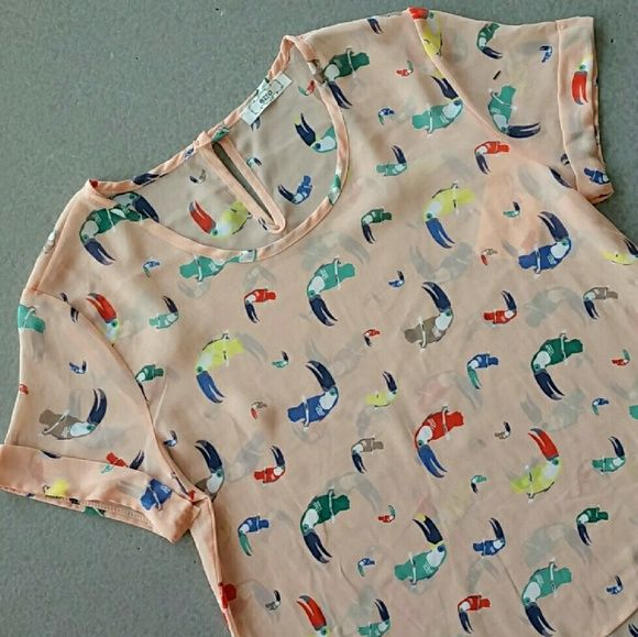 """Brand new Toucan top s/s 2016 BRAND NEW  Take yourself away to a tropical place with this fun and playful Peach top covered in multi-colored toucans. Pair with your favorite skirt and heels or shorts and sandals.  Sheer material  Peach material with multi colored toucans 100% polyester  BUst approx 19"""" Lenghth in front approx 21"""", length back approx 23""""  PRICE IS FIRM NO TRADES Tops Blouses"""