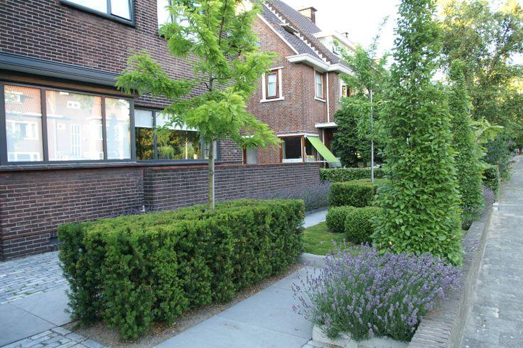 Stadstuin | Modere voortuin Scoria bricks gecombineerd met Schellevis tegels 100x100 cm Ontwerp en aanleg hoveniersbedrijf van Elsäcker Tuin. www.tuintuintuin.nl
