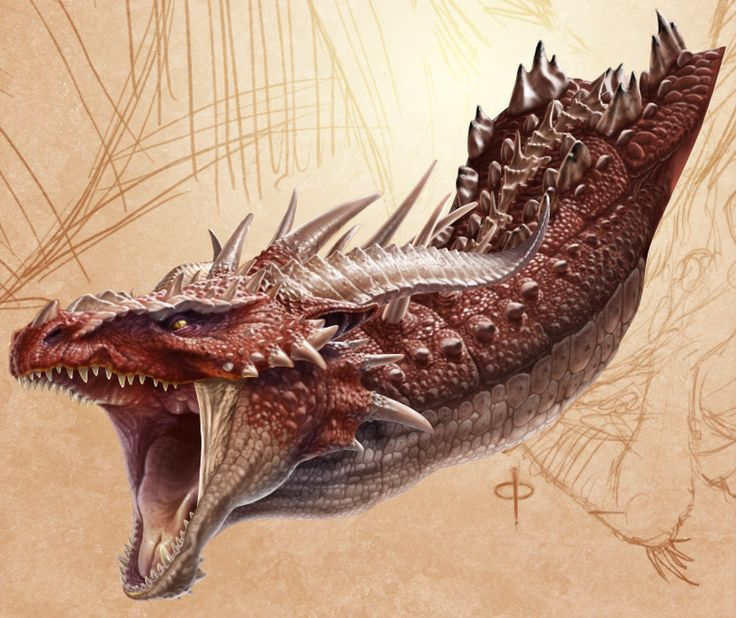 Now this is a mix breed of the earth and fire dragon