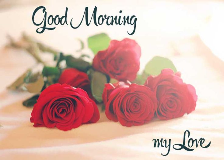 Good Morning My Love Messages - Freshmorningquotes