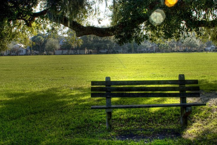The summer sun can be brutal. Avoid the sun and run under the Run under the shady trees in Daffin Park – a 77-acre city park complete with a running trail, dog park and swimming pool.