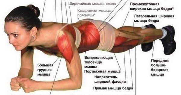 Упражнение поможет вам поднять тонус всех мышцы и скинуть лишний вес!