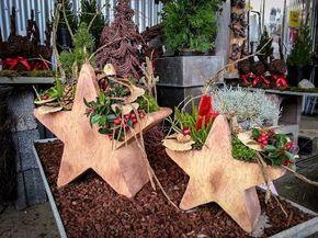 Winterfeste Outdoor-Sterne. Für ein herzliches Willkommen! #Advent #Weihnachten…