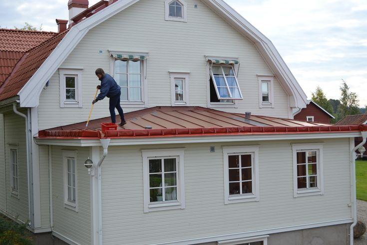 Måla tak