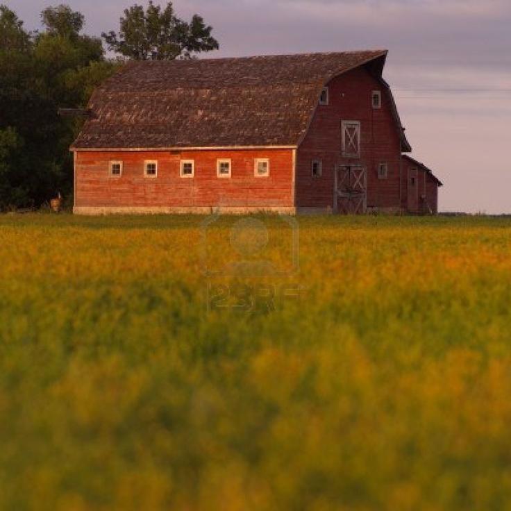 Canadian Prairies,Red Barn Stock Photo