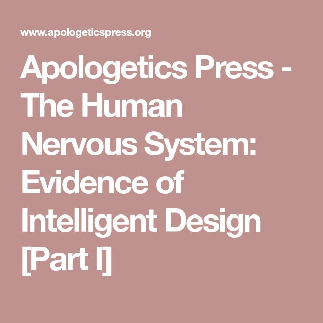Apologetics Press - The Human Nervous System: Evidence of Intelligent Design [Part I]