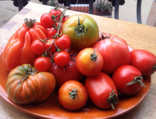 Todo el tomate que ves aquí serán recetas, hijo mío / EL COMIDISTA