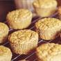 Triple Chocolate Chunk Muffins — Dashing Dish