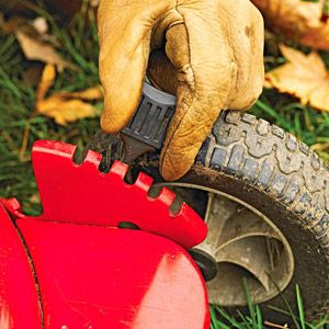 1000+ images about Gardening~ Lawncare on Pinterest   Lawn care ...