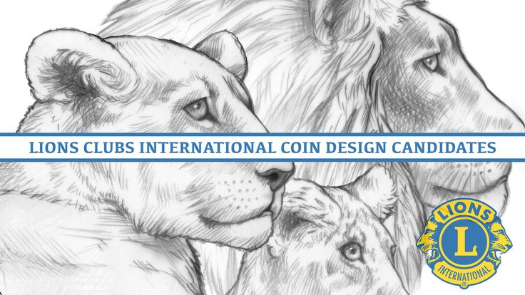First Look: 2017 Lions Clubs International CCAC Design Candidates – Video: ...